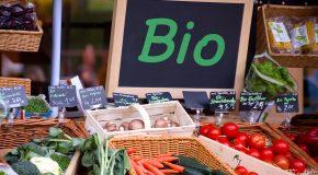 Les fruits et légumes bio coûtent le double