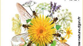 Fête des abeilles : Apidays