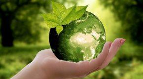 Protégé: Propositions pour une consommation plus sobre, plus juste et responsable