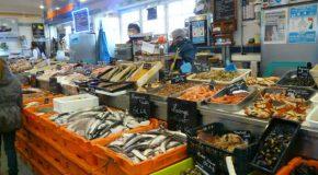 D'où vient le poisson qui est dans notre assiette ?