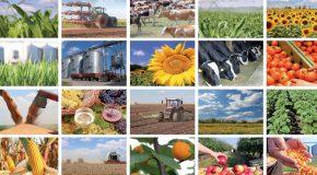 CDOA : Commission Départementale d'Orientation de l'Agriculture